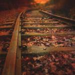 Foto von Schienen