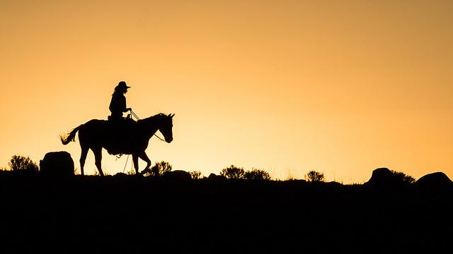 Cowboy reitet in den Sonnenuntergang