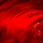 Buchrezension: Ebbe und Blut