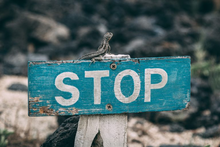 Stop-Schild (Photo by Jose Aragones on Unsplash)